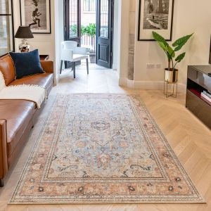 Heritage Traditional Bordered HRTG104 Rugs in Sky Terra