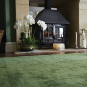 Karma Plain Viscose rugs in Fern Green