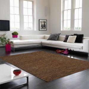 Jute Soumak Natural Woven Modern Rugs in Brown